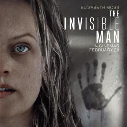 La criada invisible